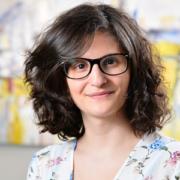 Nedji Caicco – cabinet d'avocat Bonhivers – Bruxelles